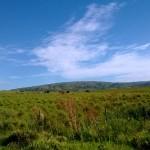 Camino Paso Arriera-4